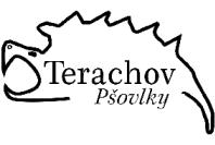 Logo kajmanka